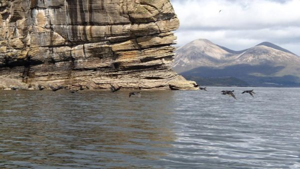 sea kayaking skye shags